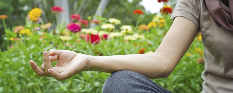 Yoga at North Haven Gardens