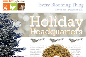 Garden newsletter at North Haven Gardens