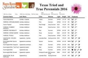 Texas Perennials at North Haven Gardens