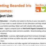Iris Rhizome Planting