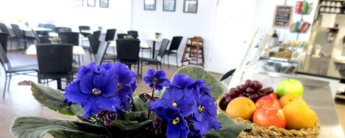 North Haven Garden Cafe