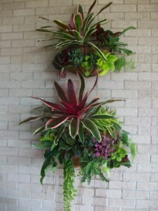 These wall baskets create the perfect nest for a variety of tropical plants.