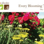 May-June 2014 Newsletter at North Haven Gardens
