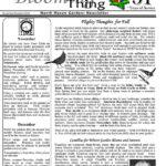 Nov – Dec 2002