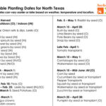Vegetable Planting Dates for north Texas at North Haven Gardens