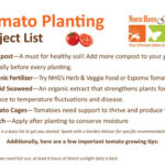 Tomato Project List at North Haven Gardens
