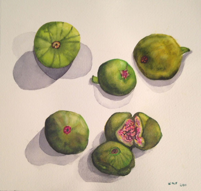 FIGS by Kathy Friedman