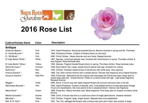 Rose list for 2016 at North Haven Gardens