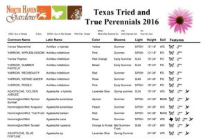 Texas Perennials at North Haven Gardens