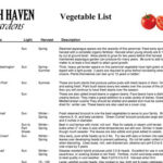 Vegetable List