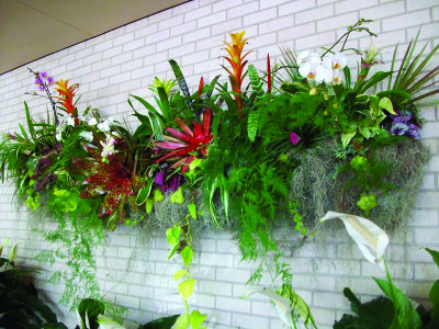 This long rough planter is a jungle of colorful tropicals including bromeliads, orchids, ivies and other foliage plants.
