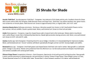 Top 25 Shrubs Shade