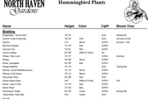 Hummingbird Plant List