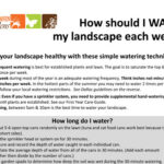 How to Water Your Landscape