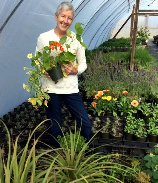 Cathi Gartin of The Cultivated Gardener