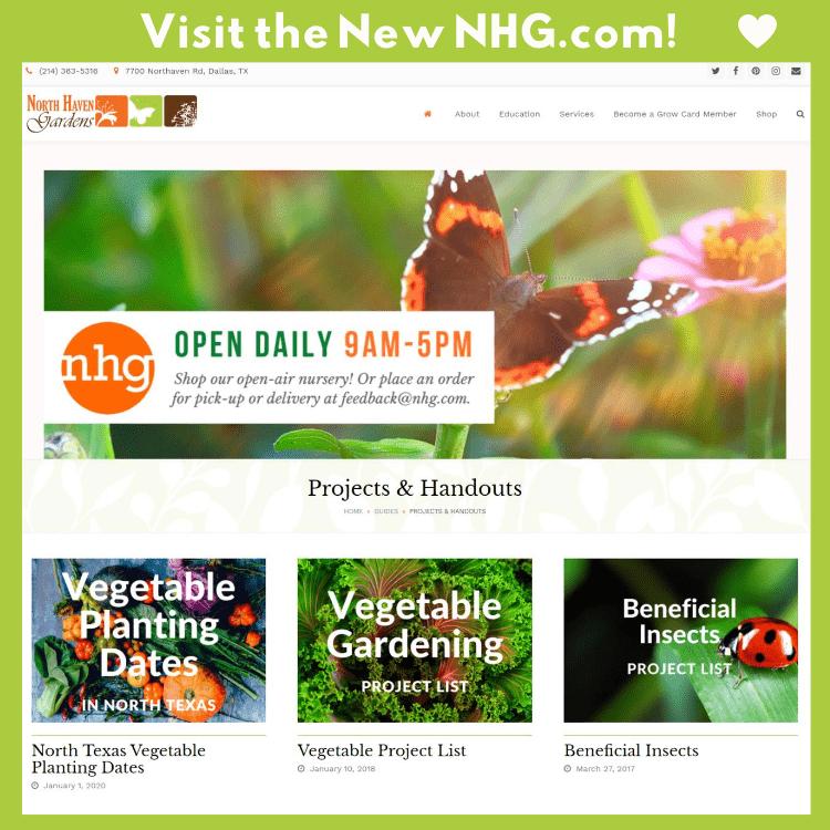 Explore Our New Website